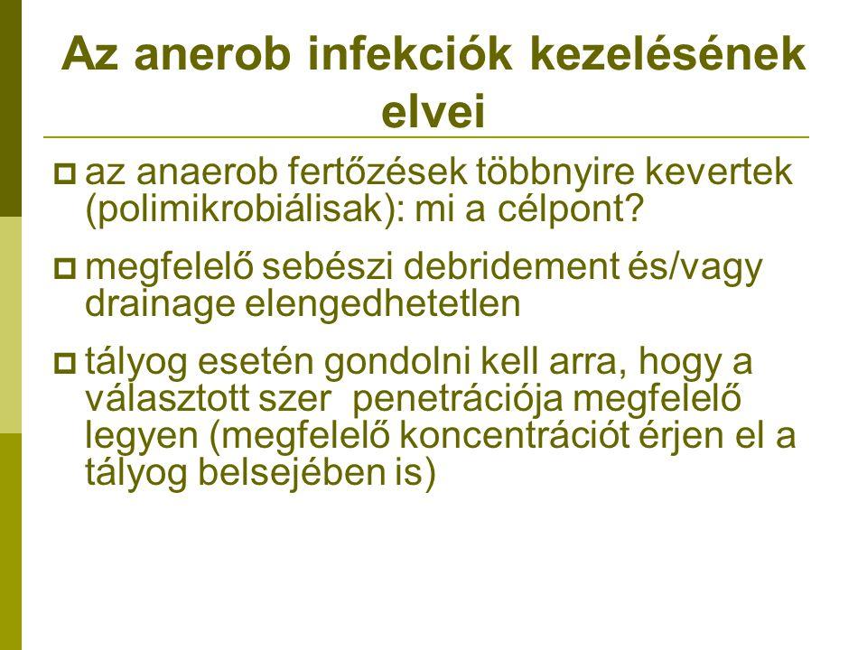 Az anerob infekciók kezelésének elvei  az anaerob fertőzések többnyire kevertek (polimikrobiálisak): mi a célpont?  megfelelő sebészi debridement és