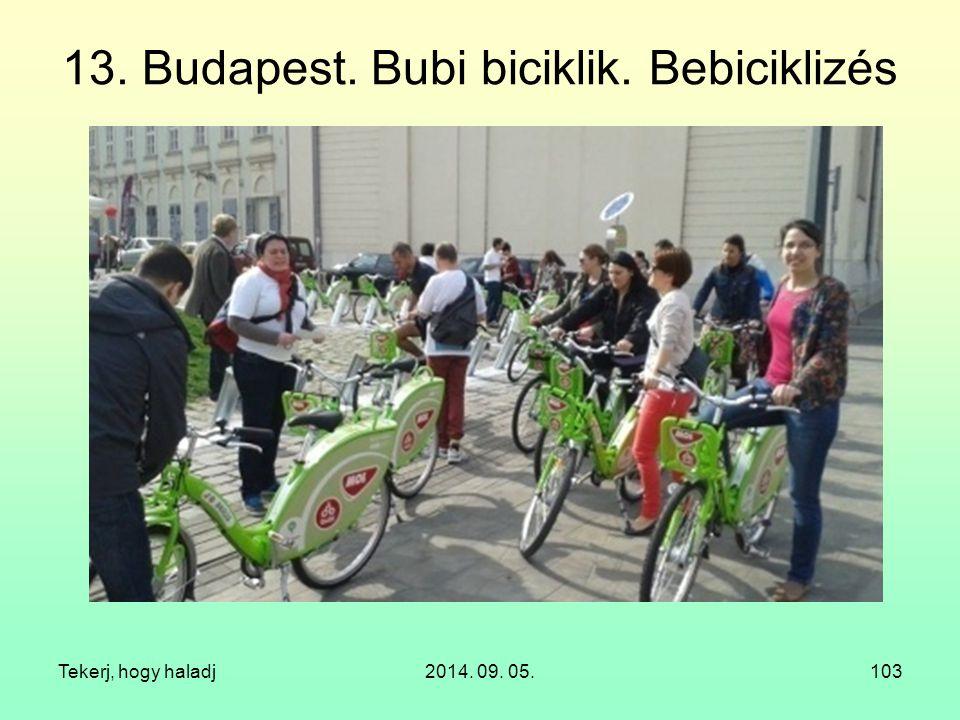 13. Budapest. Bubi biciklik. Bebiciklizés Tekerj, hogy haladj2014. 09. 05.103