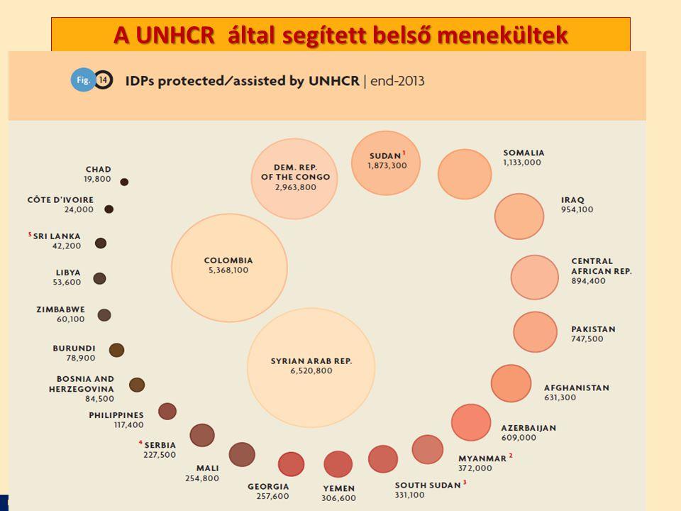 Nagy Boldizsár előadása A UNHCR által segített belső menekültek