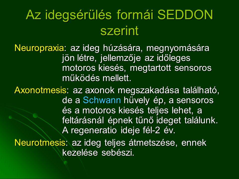 Az idegsérülés formái SEDDON szerint Neuropraxia: az ideg húzására, megnyomására jön létre, jellemzője az időleges motoros kiesés, megtartott sensoros működés mellett.
