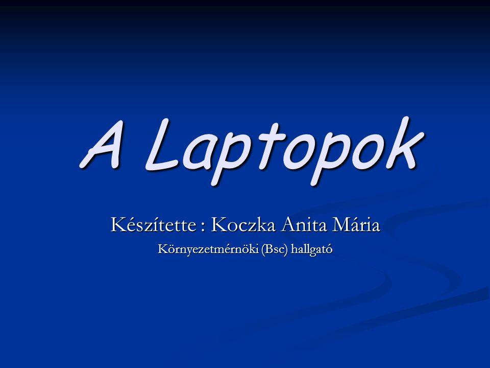 A Laptopok Készítette : Koczka Anita Mária Környezetmérnöki (Bsc) hallgató