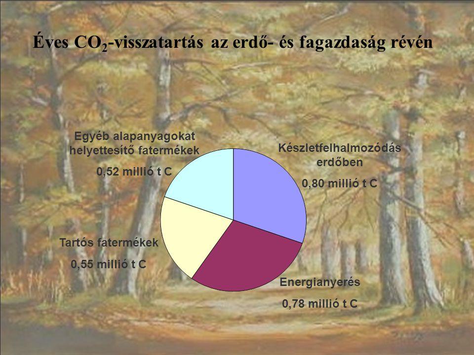 Éves CO 2 -visszatartás az erdő- és fagazdaság révén Készletfelhalmozódás erdőben 0,80 millió t C Energianyerés 0,78 millió t C Egyéb alapanyagokat he