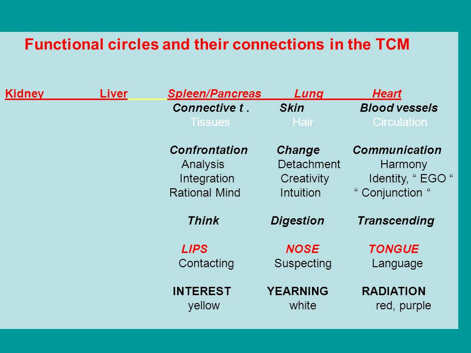Functional circles and their connections in the TCM Kidney Liver Spleen/Pancreas Lung Heart Bones Muscles Connective t. Skin Blood vessels Skeleton Te