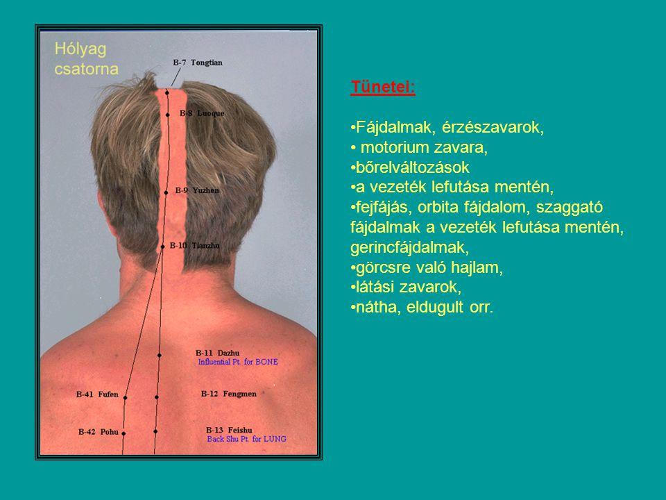 Tünetei: Fájdalmak, érzészavarok, motorium zavara, bőrelváltozások a vezeték lefutása mentén, fejfájás, orbita fájdalom, szaggató fájdalmak a vezeték lefutása mentén, gerincfájdalmak, görcsre való hajlam, látási zavarok, nátha, eldugult orr.