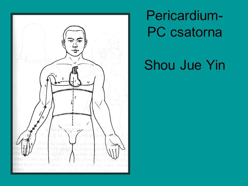 Pericardium- PC csatorna Shou Jue Yin