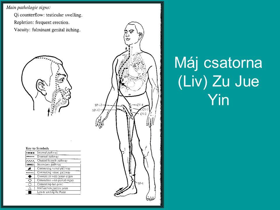 Máj csatorna (Liv) Zu Jue Yin