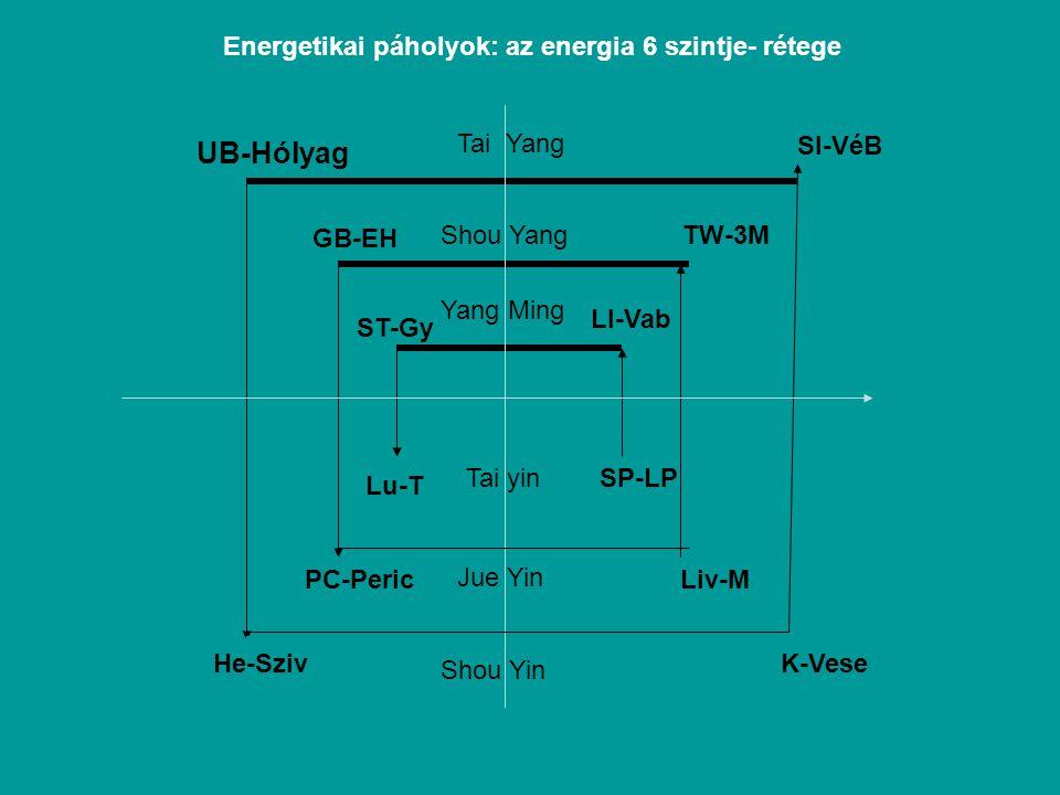 UB-Hólyag SI-VéB GB-EH TW-3M ST-Gy LI-Vab Lu-T SP-LP PC-PericLiv-M He-SzivK-Vese Tai Yang Shou Yang Yang Ming Tai yin Jue Yin Shou Yin Energetikai páholyok: az energia 6 szintje- rétege