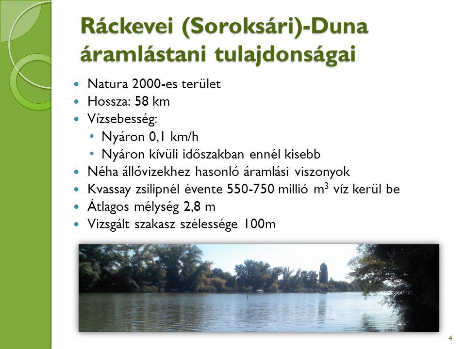 Ráckevei (Soroksári)-Duna áramlástani tulajdonságai Natura 2000-es terület Hossza: 58 km Vízsebesség: Nyáron 0,1 km/h Nyáron kívüli időszakban ennél kisebb Néha állóvizekhez hasonló áramlási viszonyok Kvassay zsilipnél évente 550-750 millió m 3 víz kerül be Átlagos mélység 2,8 m Vizsgált szakasz szélessége 100m 4