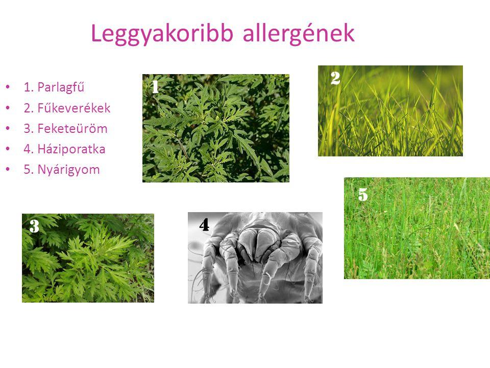 Leggyakoribb allergének 1. Parlagfű 2. Fűkeverékek 3. Feketeüröm 4. Háziporatka 5. Nyárigyom 1 3 5 2 4