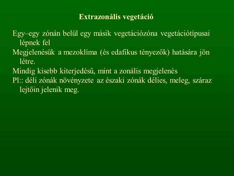 Extrazonális vegetáció Egy–egy zónán belül egy másik vegetációzóna vegetációtípusai lépnek fel Megjelenésük a mezoklíma (és edafikus tényezők) hatásár