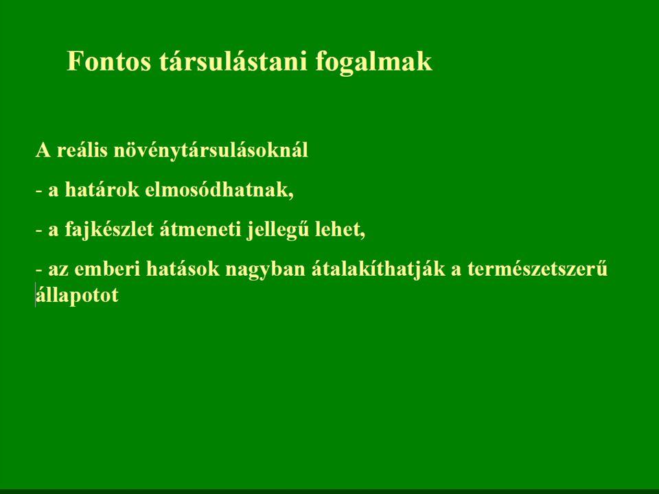 A koratavaszi aszpektus itt is nagyon jellemző, bár fajszegényebb.