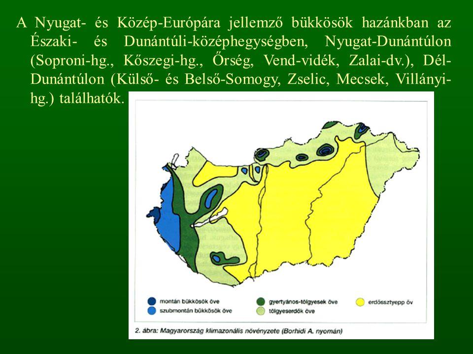 A Nyugat- és Közép-Európára jellemző bükkösök hazánkban az Északi- és Dunántúli-középhegységben, Nyugat-Dunántúlon (Soproni-hg., Kőszegi-hg., Őrség, V