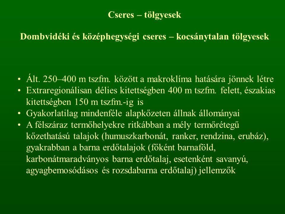 Cseres – tölgyesek Dombvidéki és középhegységi cseres – kocsánytalan tölgyesek Ált. 250–400 m tszfm. között a makroklíma hatására jönnek létre Extrare