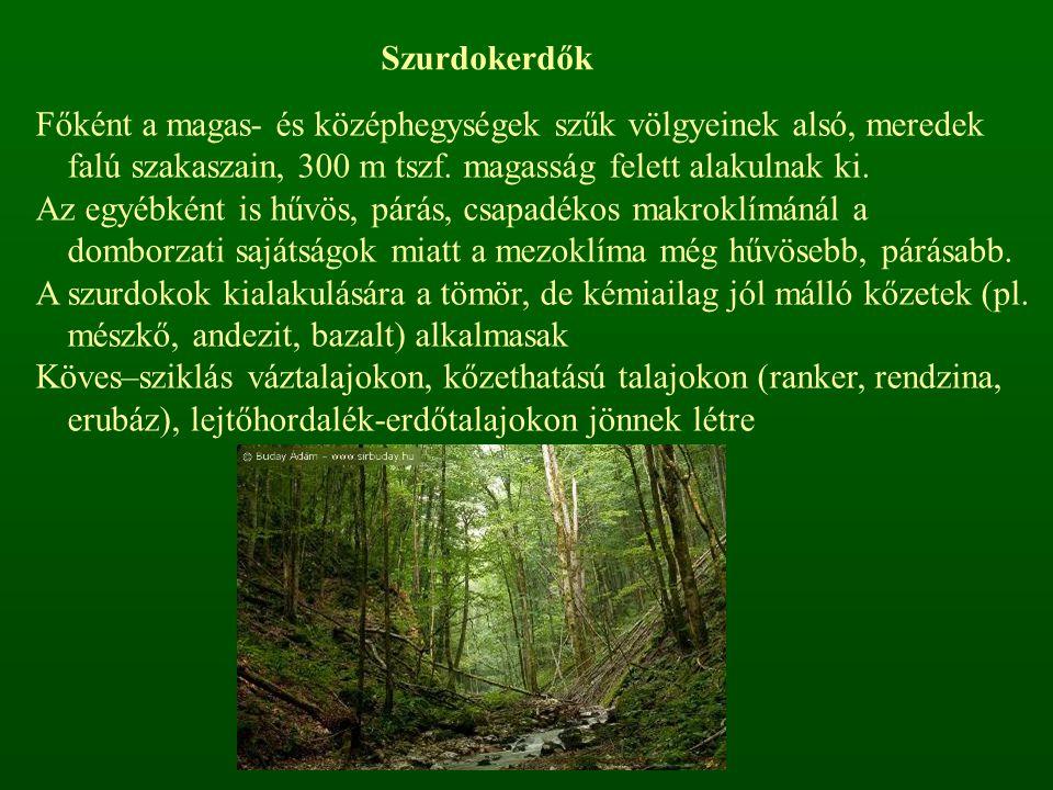 Szurdokerdők Főként a magas- és középhegységek szűk völgyeinek alsó, meredek falú szakaszain, 300 m tszf. magasság felett alakulnak ki. Az egyébként i
