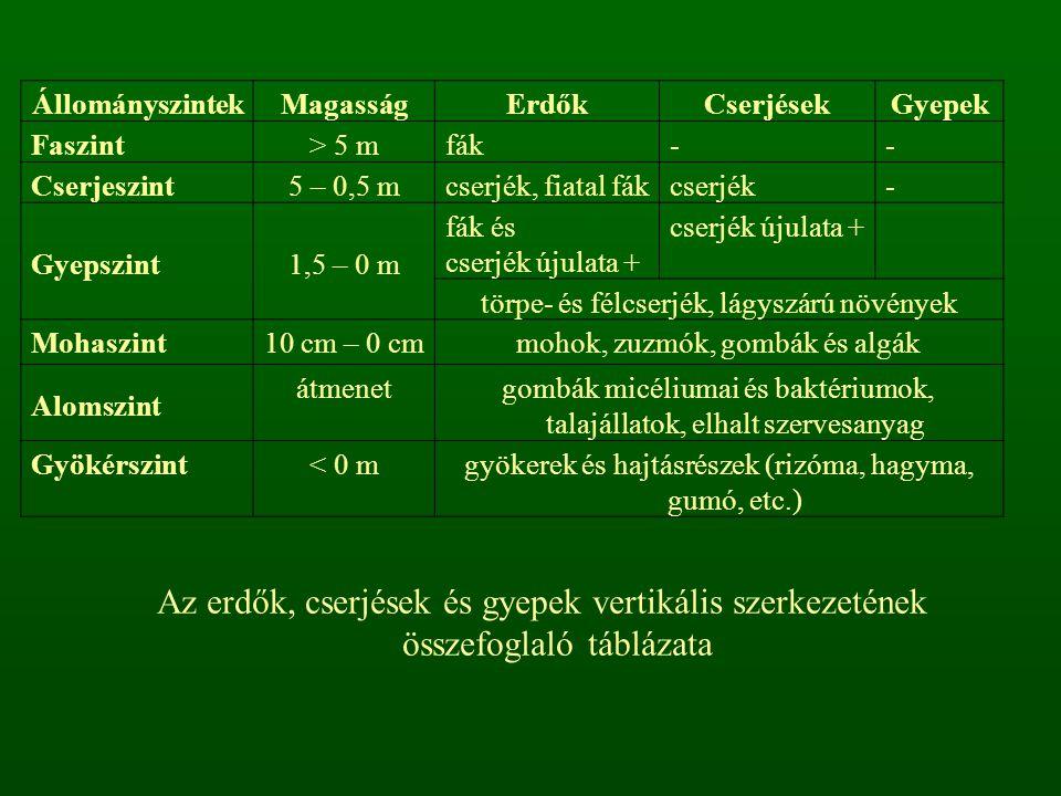 Magashegységi bükkösök A dombvidéki és középhegységi bükkösöktől jól elkülönül az Északi-középhegység montán jellegű régióiban (Börzsöny, Mátra, Bükk, Zempléni-hg.) – általában 750 m tszfm.