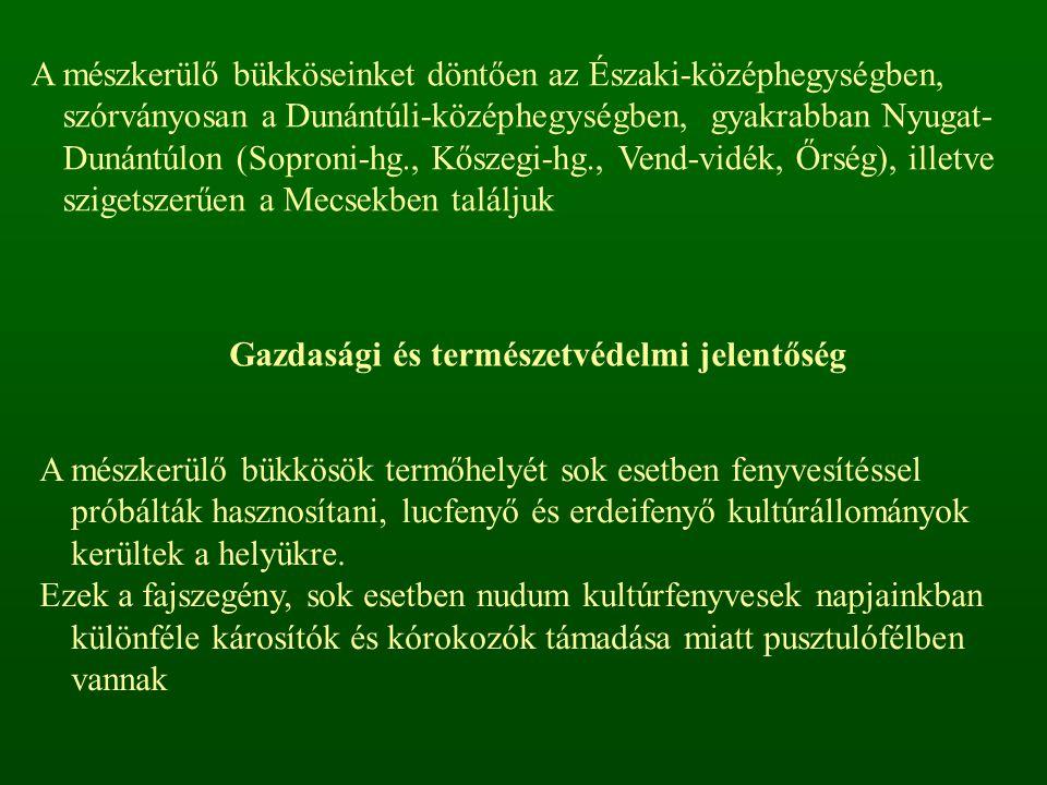 A mészkerülő bükköseinket döntően az Északi-középhegységben, szórványosan a Dunántúli-középhegységben, gyakrabban Nyugat- Dunántúlon (Soproni-hg., Kős