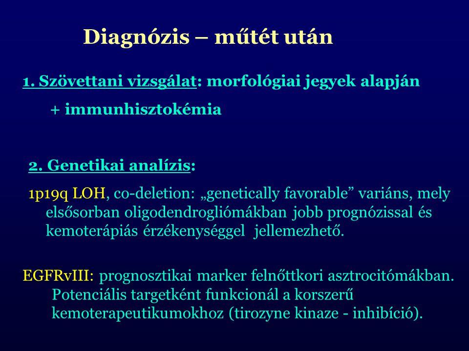 """Diagnózis – műtét után 1. Szövettani vizsgálat: morfológiai jegyek alapján + immunhisztokémia 2. Genetikai analízis: 1p19q LOH, co-deletion: """"genetica"""
