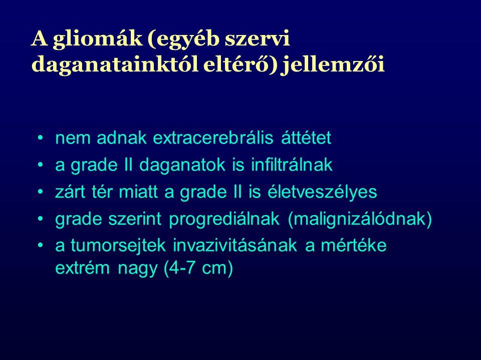 nem adnak extracerebrális áttétet a grade II daganatok is infiltrálnak zárt tér miatt a grade II is életveszélyes grade szerint progrediálnak (malignizálódnak) a tumorsejtek invazivitásának a mértéke extrém nagy (4-7 cm) A gliomák (egyéb szervi daganatainktól eltérő) jellemzői