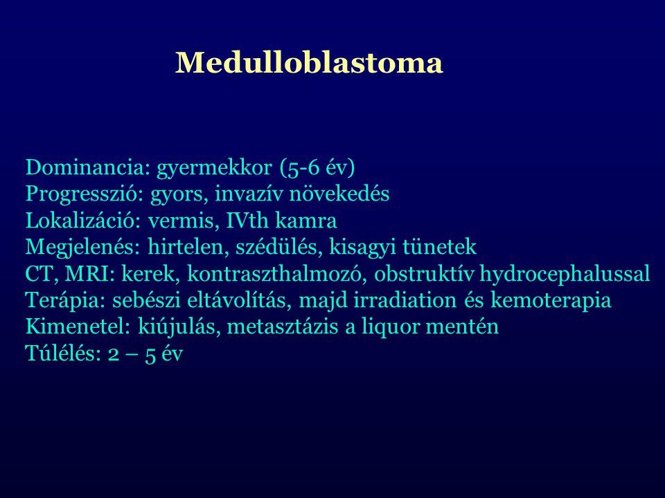 Medulloblastoma Dominancia: gyermekkor (5-6 év) Progresszió: gyors, invazív növekedés Lokalizáció: vermis, IVth kamra Megjelenés: hirtelen, szédülés, kisagyi tünetek CT, MRI: kerek, kontraszthalmozó, obstruktív hydrocephalussal Terápia: sebészi eltávolítás, majd irradiation és kemoterapia Kimenetel: kiújulás, metasztázis a liquor mentén Túlélés: 2 – 5 év