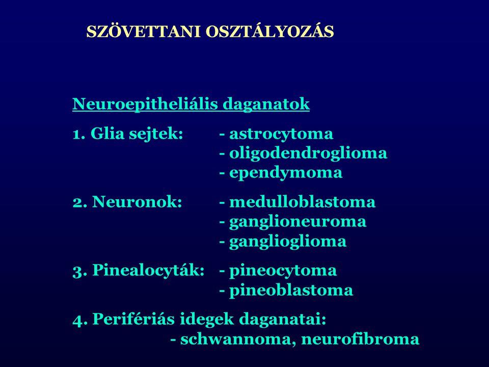 SZÖVETTANI OSZTÁLYOZÁS Neuroepitheliális daganatok 1.Glia sejtek:- astrocytoma - oligodendroglioma - ependymoma 2.