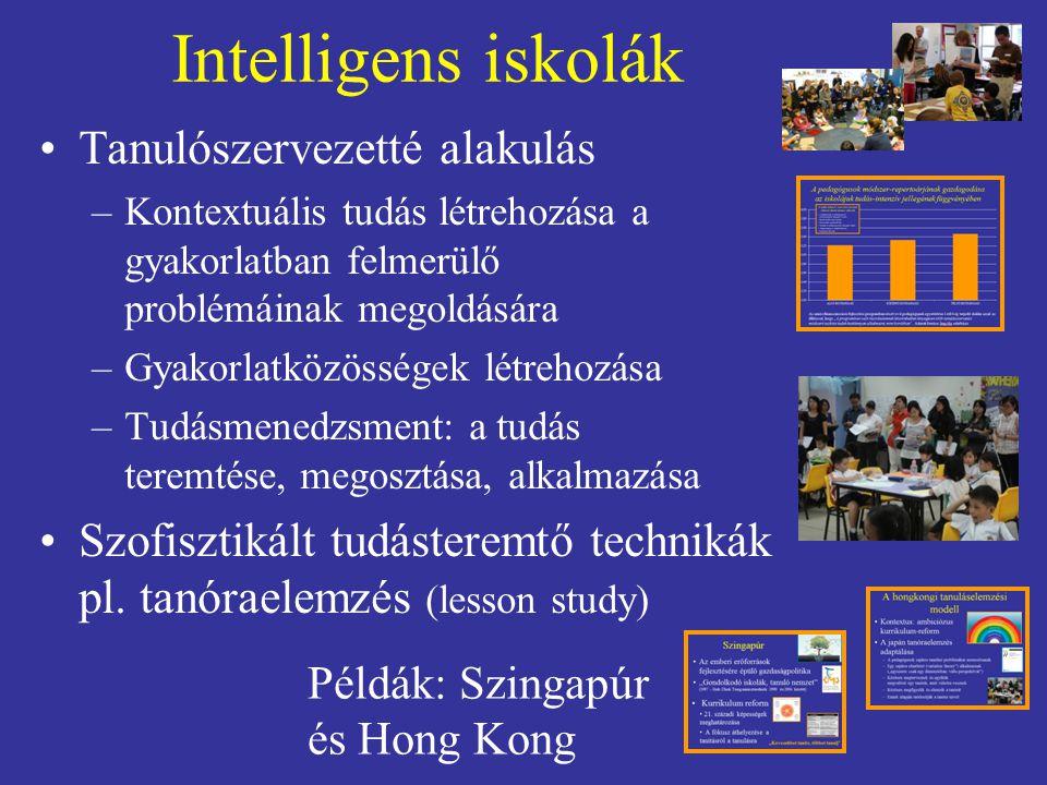 Intelligens iskolák Tanulószervezetté alakulás –Kontextuális tudás létrehozása a gyakorlatban felmerülő problémáinak megoldására –Gyakorlatközösségek