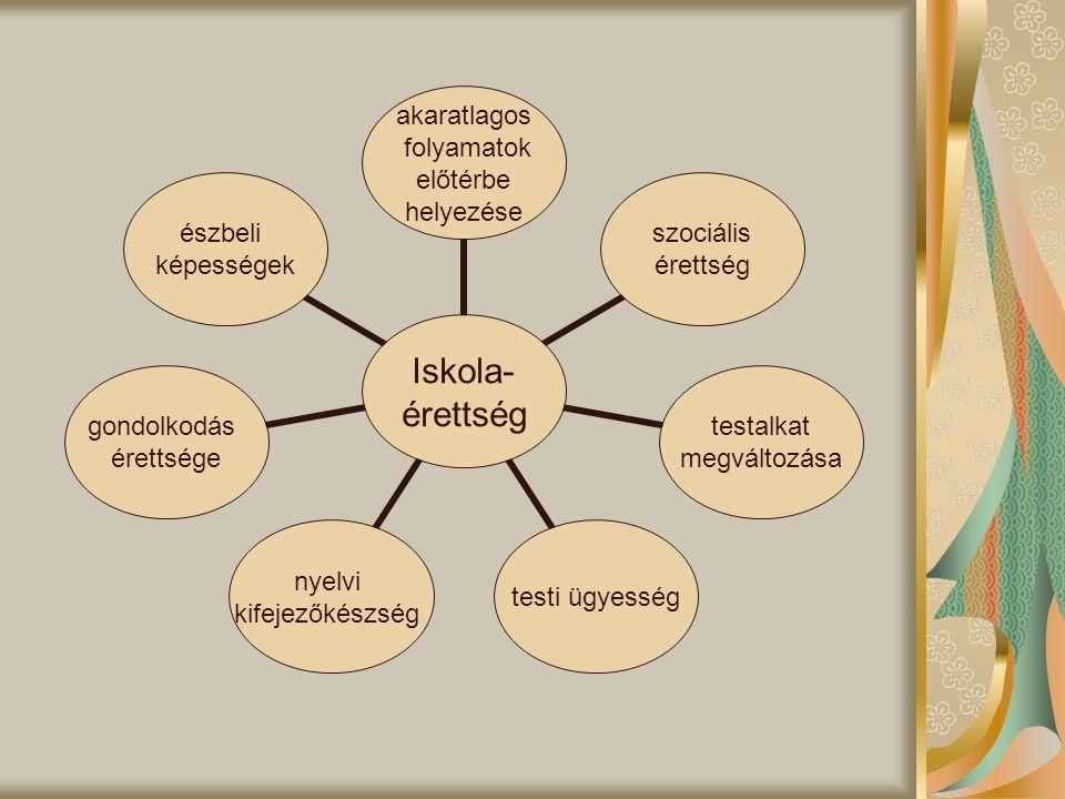 Iskola- érettség akaratlagos folyamatok előtérbe helyezése szociális érettség testalkat megváltozása testi ügyesség nyelvi kifejezőkészség gondolkodás