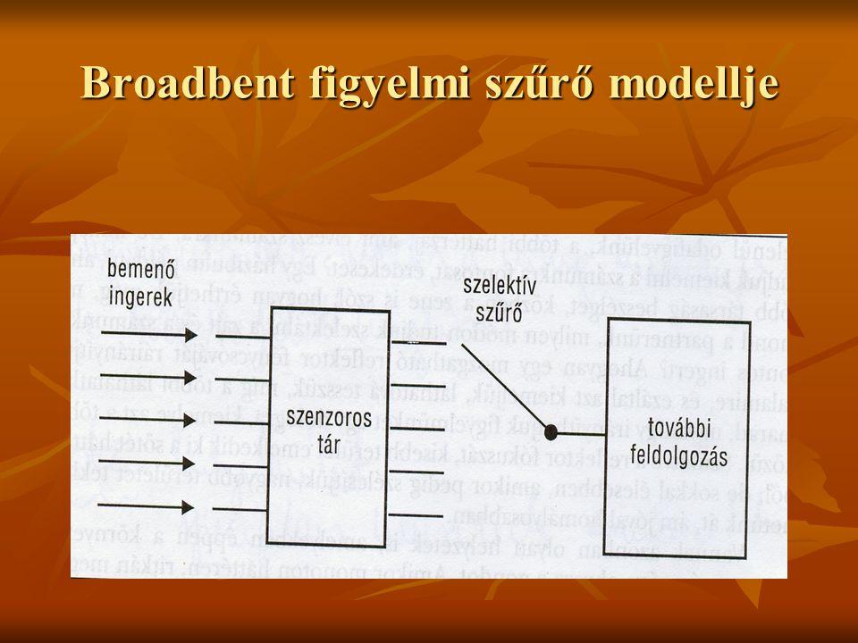 Collins és Loftus: Terjedő aktiváció Ebben a modellben a fogalmak nem hierarchikusan szerveződnek, a közöttük lévő kapcsolat változó erősségű.