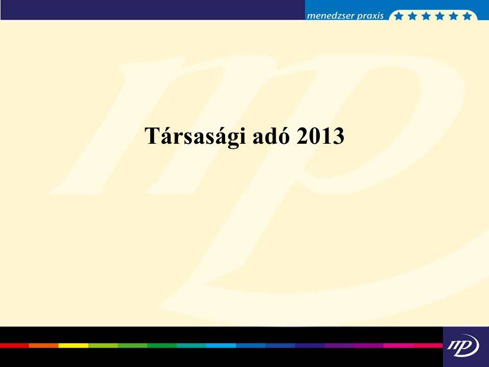 Társasági adó 2013