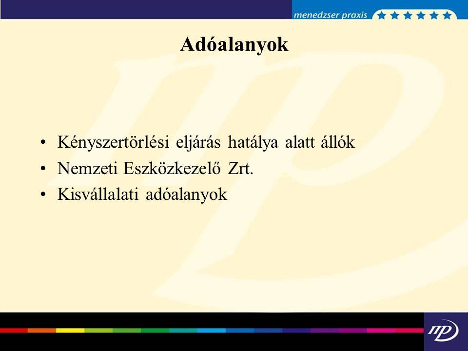 Adószám-felfüggesztés 2013.