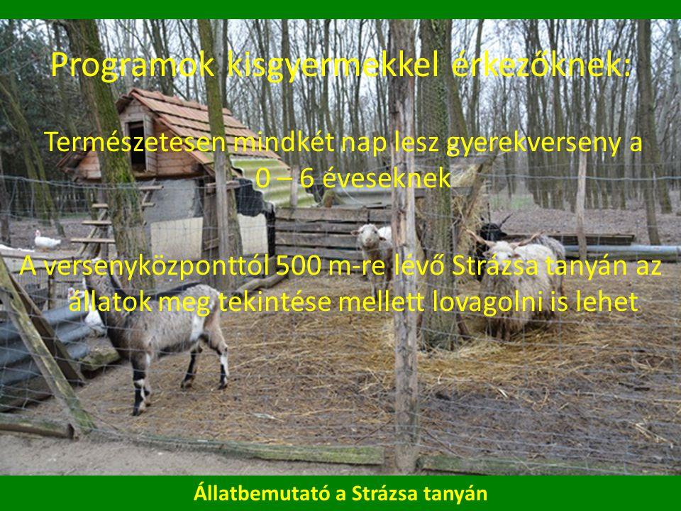 Programok kisgyermekkel érkezőknek: Természetesen mindkét nap lesz gyerekverseny a 0 – 6 éveseknek A versenyközponttól 500 m-re lévő Strázsa tanyán az állatok meg tekintése mellett lovagolni is lehet Állatbemutató a Strázsa tanyán