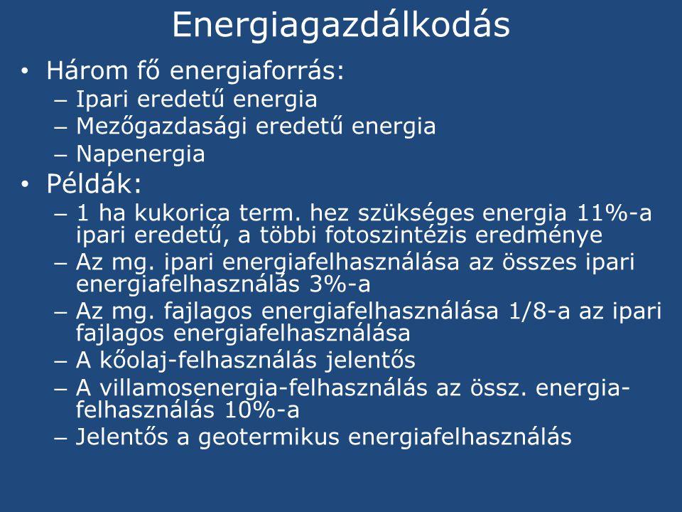 Energiagazdálkodás Három fő energiaforrás: – Ipari eredetű energia – Mezőgazdasági eredetű energia – Napenergia Példák: – 1 ha kukorica term.