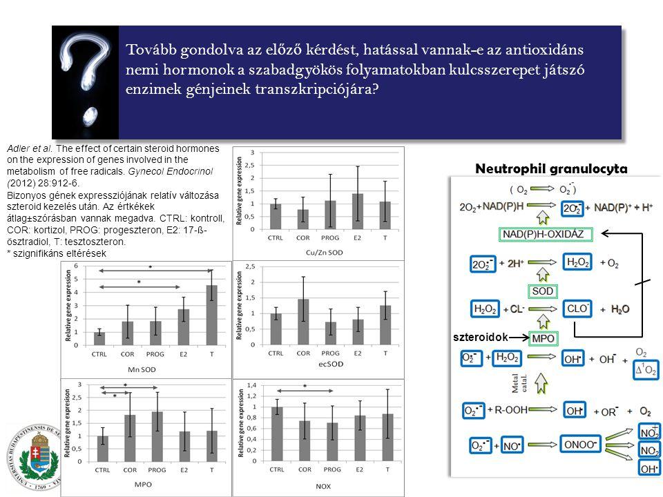 Tovább gondolva az el ő z ő kérdést, hatással vannak-e az antioxidáns nemi hormonok a szabadgyökös folyamatokban kulcsszerepet játszó enzimek génjeinek transzkripciójára.