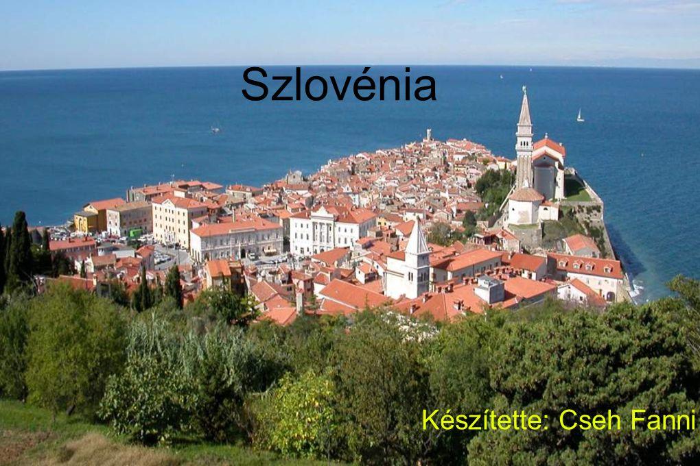 Elhelyezkedése: Szlovénia Közép-Európa déli részén, az Alpok lábánál terül el.
