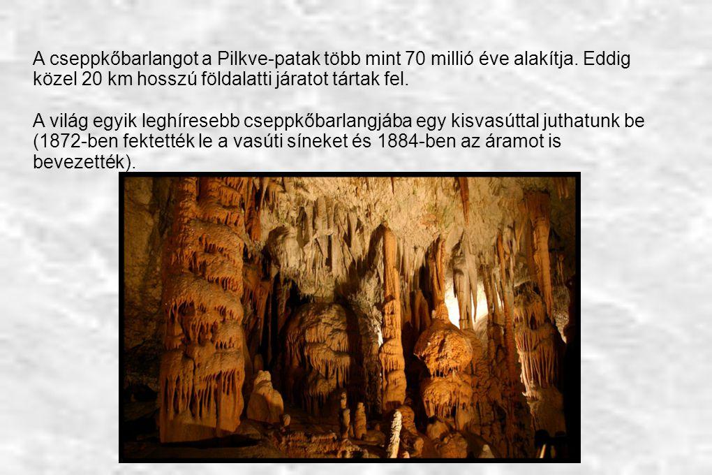 A cseppkőbarlangot a Pilkve-patak több mint 70 millió éve alakítja. Eddig közel 20 km hosszú földalatti járatot tártak fel. A világ egyik leghíresebb