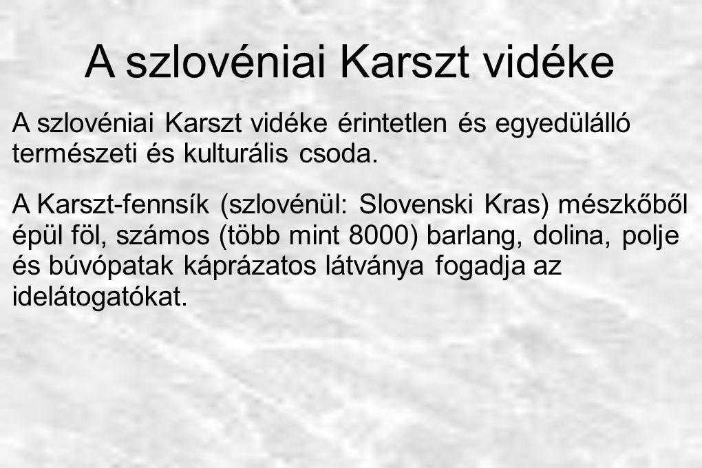 A szlovéniai Karszt vidéke A szlovéniai Karszt vidéke érintetlen és egyedülálló természeti és kulturális csoda. A Karszt-fennsík (szlovénül: Slovenski