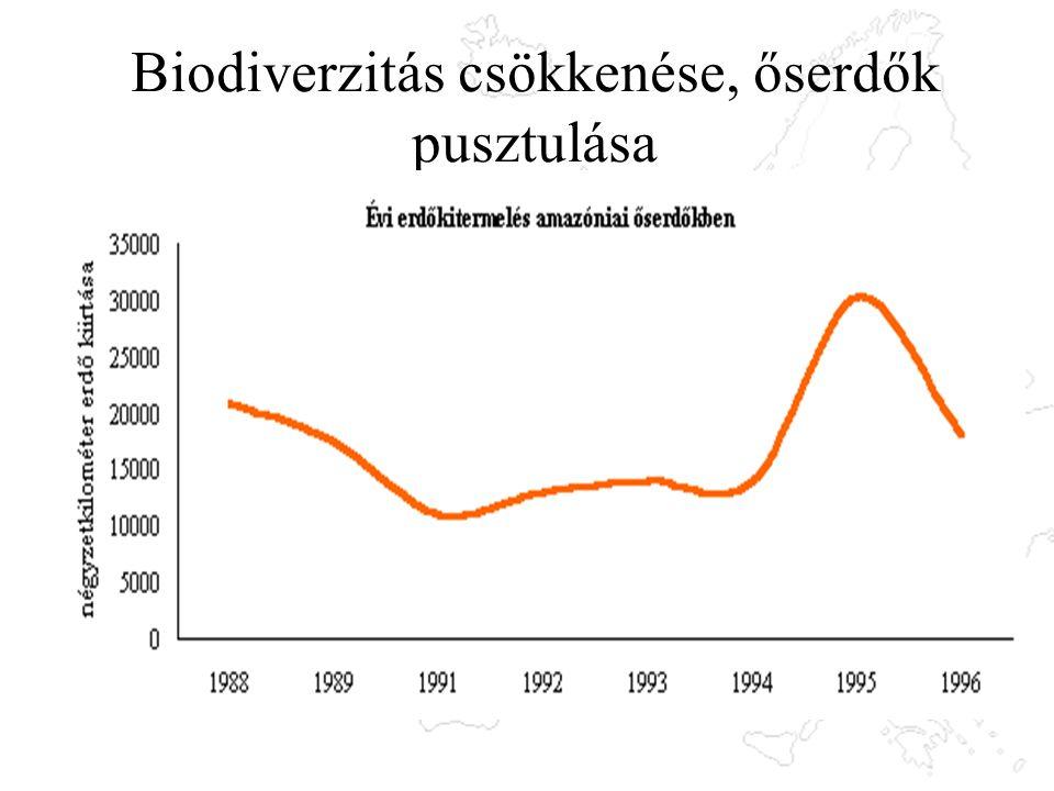 Biodiverzitás csökkenése, őserdők pusztulása