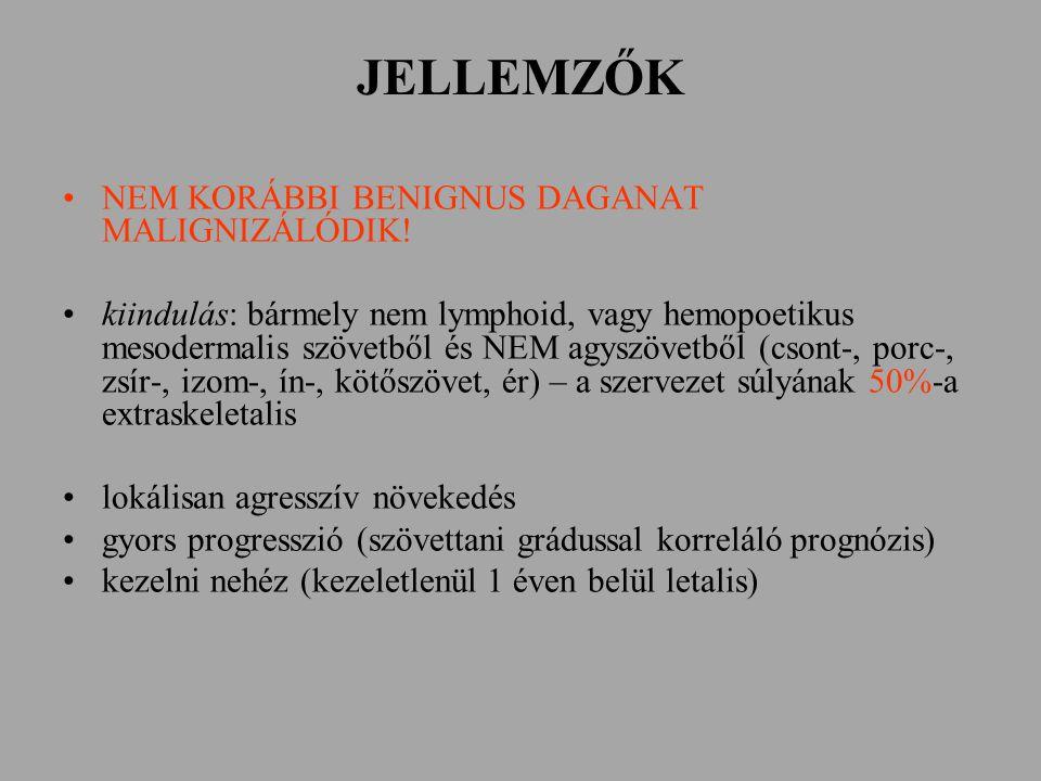 JELLEMZŐK NEM KORÁBBI BENIGNUS DAGANAT MALIGNIZÁLÓDIK! kiindulás: bármely nem lymphoid, vagy hemopoetikus mesodermalis szövetből és NEM agyszövetből (