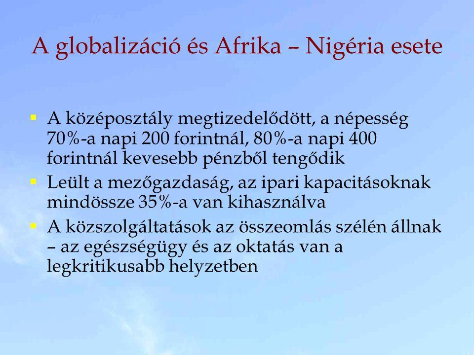  A középosztály megtizedelődött, a népesség 70%-a napi 200 forintnál, 80%-a napi 400 forintnál kevesebb pénzből tengődik  Leült a mezőgazdaság, az ipari kapacitásoknak mindössze 35%-a van kihasználva  A közszolgáltatások az összeomlás szélén állnak – az egészségügy és az oktatás van a legkritikusabb helyzetben A globalizáció és Afrika – Nigéria esete