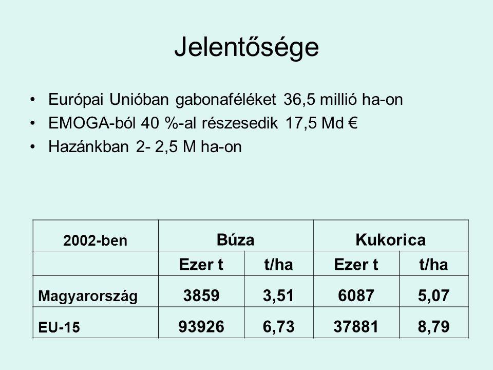 Jelentősége Európai Unióban gabonaféléket 36,5 millió ha-on EMOGA-ból 40 %-al részesedik 17,5 Md € Hazánkban 2- 2,5 M ha-on 2002-ben BúzaKukorica Ezer