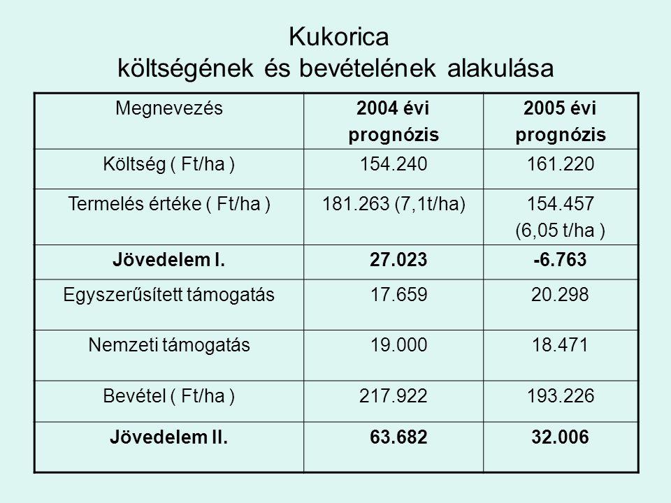 Kukorica költségének és bevételének alakulása Megnevezés2004 évi prognózis 2005 évi prognózis Költség ( Ft/ha )154.240161.220 Termelés értéke ( Ft/ha