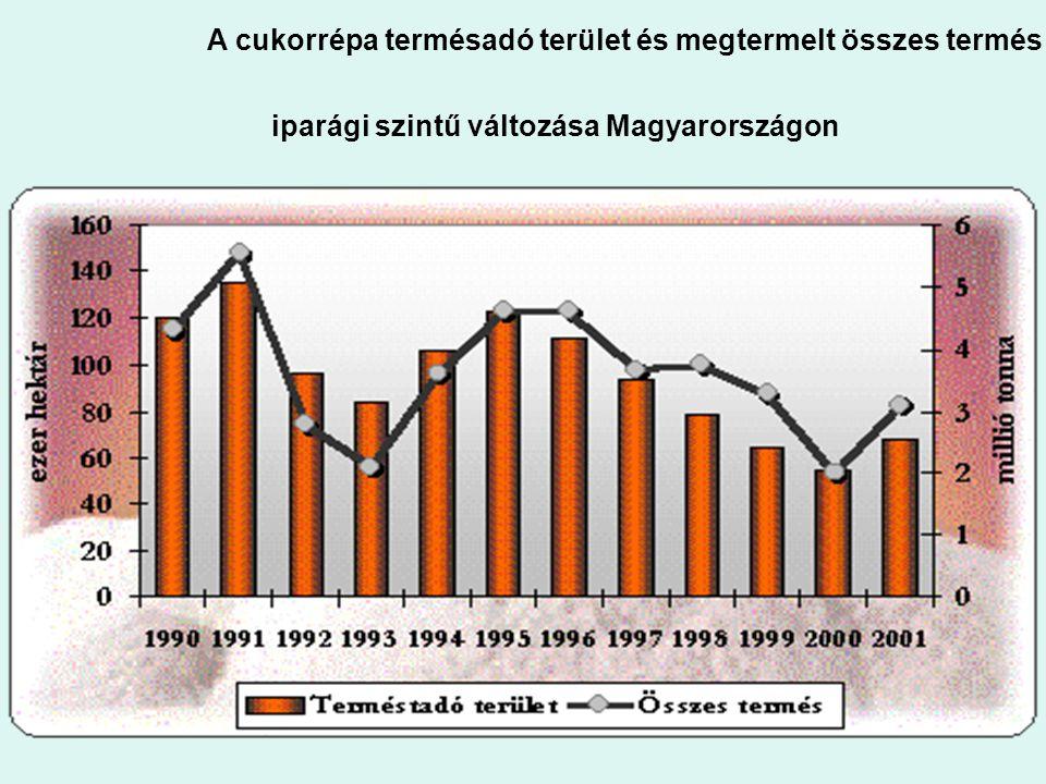 1. ábra: A cukorrépa terméstadó terület és megtermelt összes termés iparági szintű változása Magyarországon 1. ábra: A cukorrépa terméstadó terület és