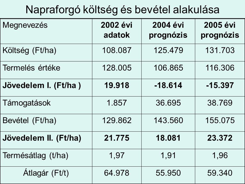 Napraforgó költség és bevétel alakulása Megnevezés2002 évi adatok 2004 évi prognózis 2005 évi prognózis Költség (Ft/ha)108.087125.479131.703 Termelés
