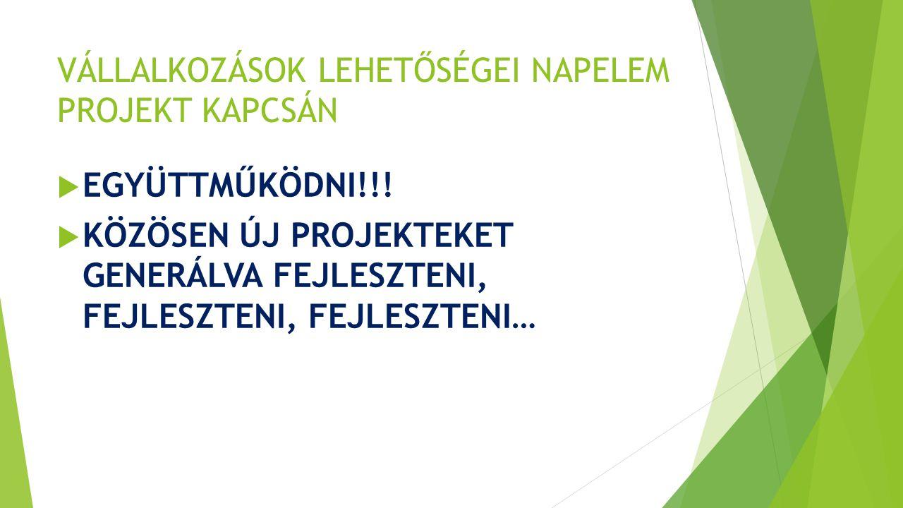 VÁLLALKOZÁSOK LEHETŐSÉGEI NAPELEM PROJEKT KAPCSÁN  EGYÜTTMŰKÖDNI!!.