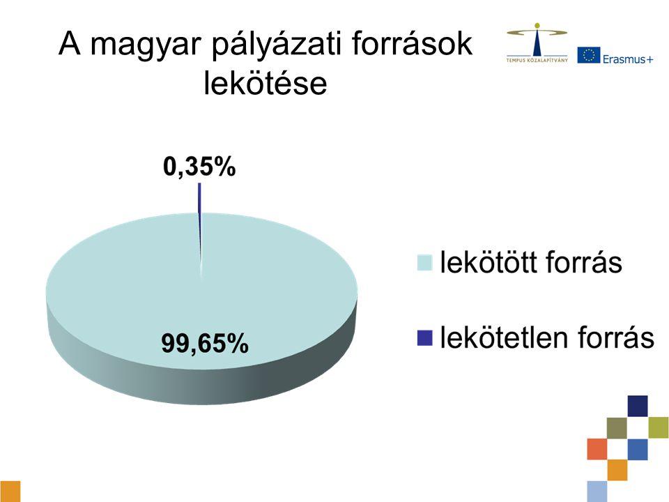 A támogatott pályázatok száma