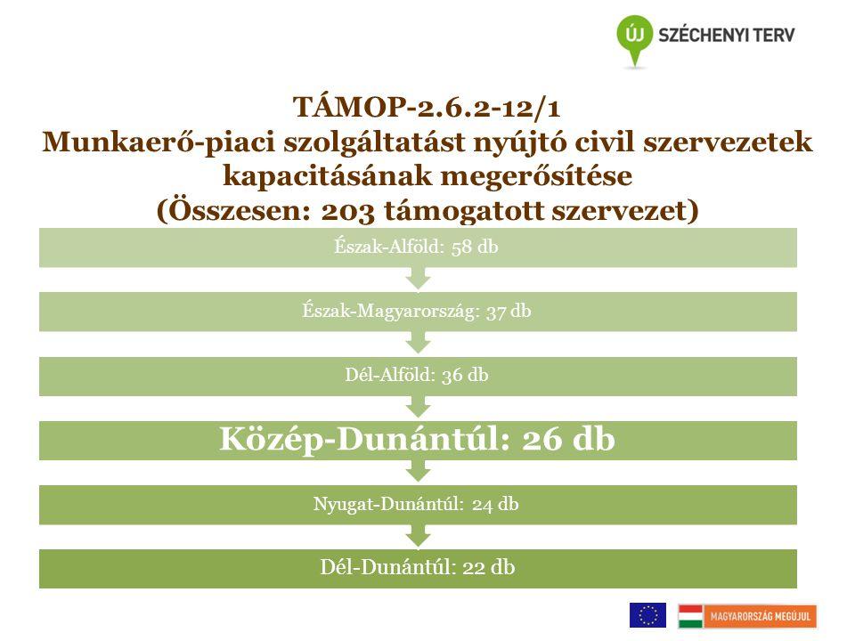TÁMOP-2.6.2-12/1 Munkaerő-piaci szolgáltatást nyújtó civil szervezetek kapacitásának megerősítése (Összesen: 203 támogatott szervezet) Dél-Dunántúl: 22 db Nyugat-Dunántúl: 24 db Közép-Dunántúl: 26 db Dél-Alföld: 36 db Észak-Magyarország: 37 db Észak-Alföld: 58 db