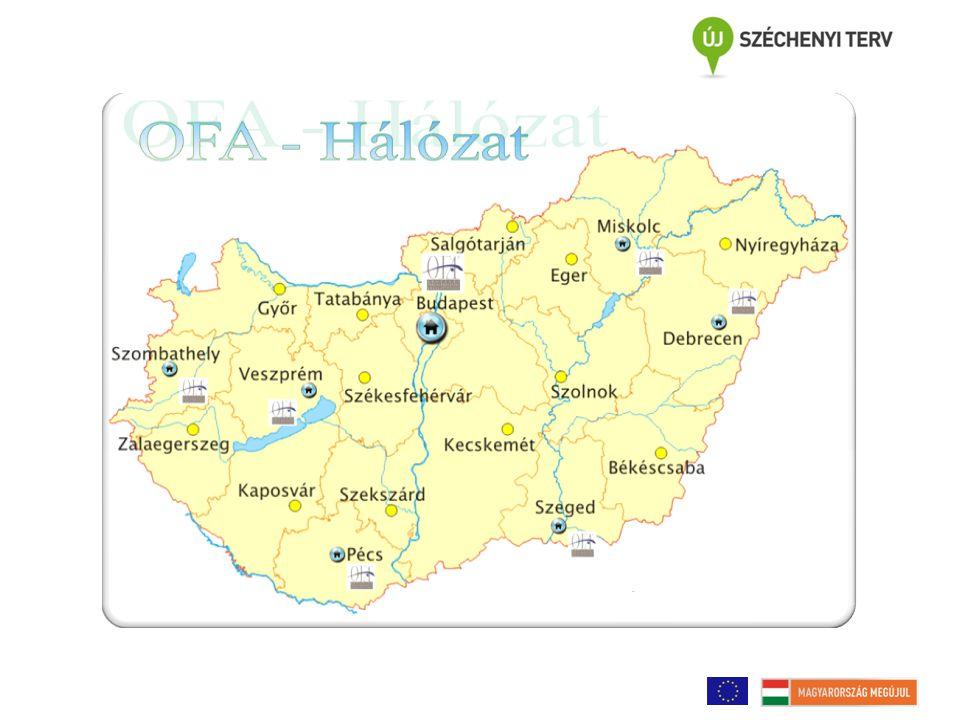 Az OFA szerepe a foglalkoztatás elősegítésében 2.2008-2010.
