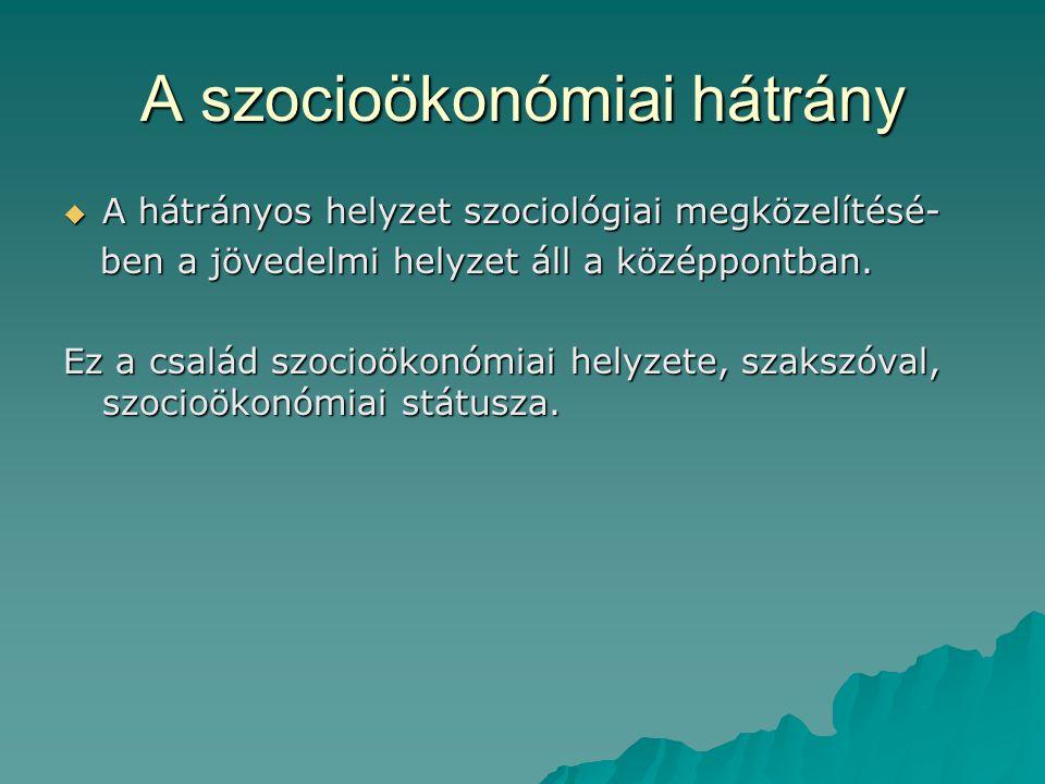 A szocioökonómiai hátrány  A hátrányos helyzet szociológiai megközelítésé- ben a jövedelmi helyzet áll a középpontban. ben a jövedelmi helyzet áll a