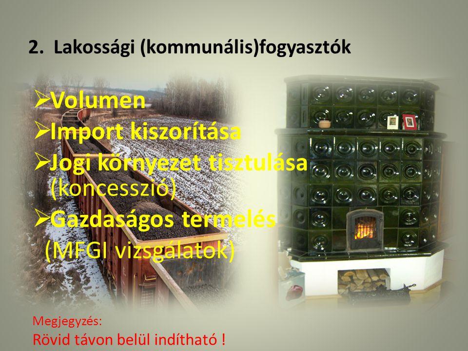 2. Lakossági (kommunális)fogyasztók  Volumen  Import kiszorítása  Jogi környezet tisztulása (koncesszió)  Gazdaságos termelés (MFGI vizsgálatok) M