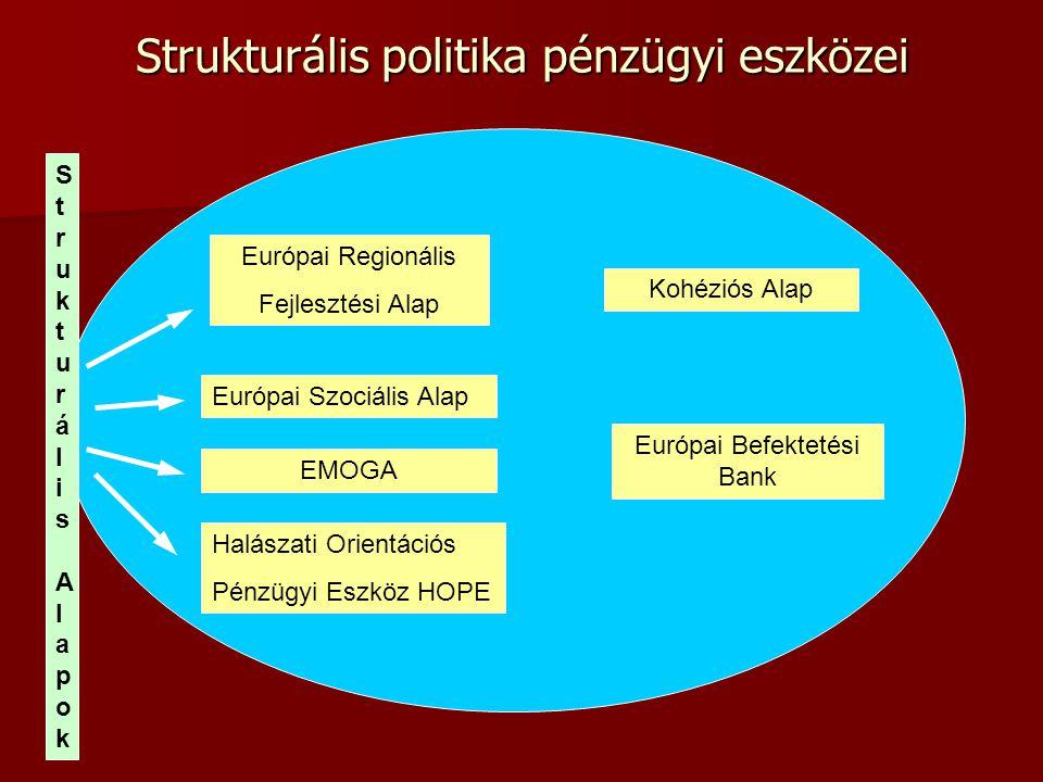 Strukturális politika pénzügyi eszközei Európai Regionális Fejlesztési Alap Európai Szociális Alap EMOGA Halászati Orientációs Pénzügyi Eszköz HOPE Ko