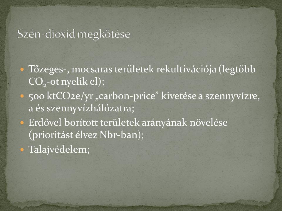 """Tőzeges-, mocsaras területek rekultivációja (legtöbb CO 2 -ot nyelik el); 500 ktCO2e/yr """"carbon-price kivetése a szennyvízre, a és szennyvízhálózatra; Erdővel borított területek arányának növelése (prioritást élvez Nbr-ban); Talajvédelem;"""
